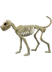 Buster Bones Props