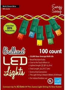 Holiday Lights M 5 Multi