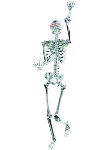 Skeleton Light Up Prop