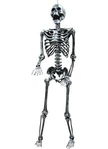 Skeleton Props