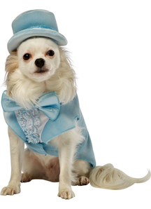 Dumb Dumber Harry Dog Costume