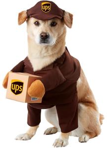 Ups Pet Costume