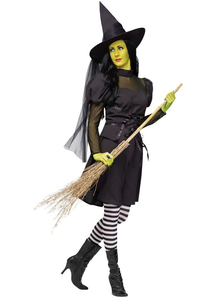 Evil Witch Adult Costume - 22083
