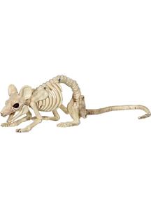 Mouse Crawling Skeleton