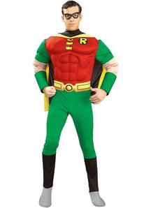 Robin Adult Costume