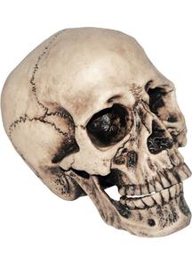 Vinyl Skull 7 inches