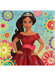 Elena Of Avalor Sq Plates