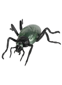 Cockroach 7 inches