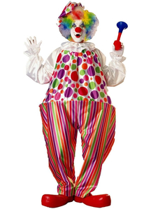 Multicolor Clown Adult Costume