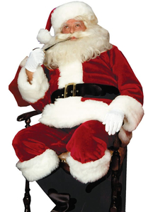 Royal Santa Adult Costume