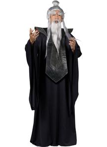 Sensei Master Adult Costume