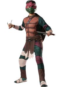 Tmnt Raphael Adult Costume