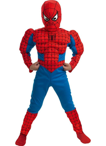 Classic Spiderman Muscle Child Costume