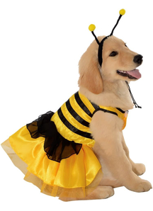 Cute Bee Pet Costume