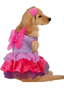Fairy Pet Costume