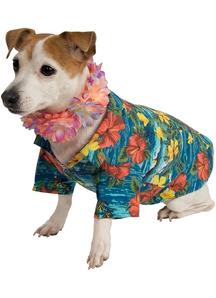 Hawai Pet Costume
