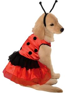 Ladybug Pet Costume