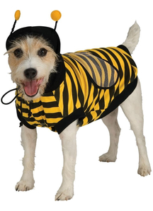 Sweet Bee Pet Costume