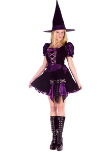 Purple Witch Adult Costume