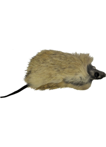 Furry Mouse