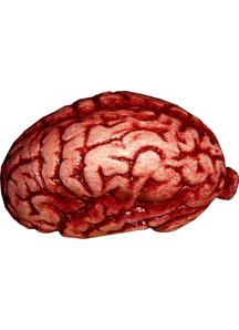 Latex Brain