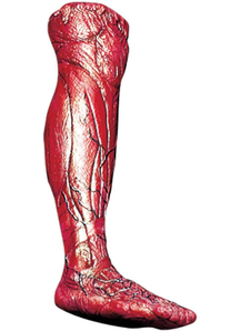 Skinned Right Leg