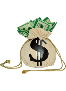 Purse Money Bag