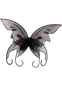 Wings Butterfly Black