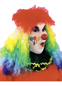 Clown Rainbow Wig For Adults