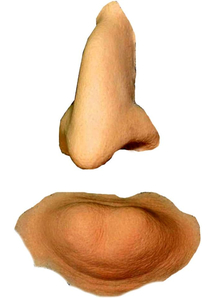 Witch Nose And Chin Foam Latex
