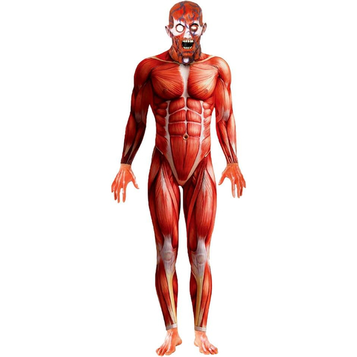 Anatomy Man Adult Costume