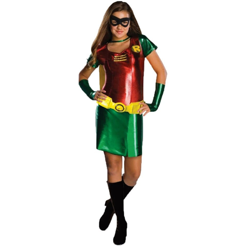 Robin Girl Teen Costume