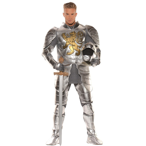 Metallic Knight Adult Costume