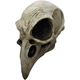 Crow Skull Latex Mask For Adults