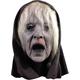 The wraith Mask