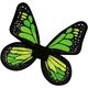 Wings Butterfly Satin Ch Green